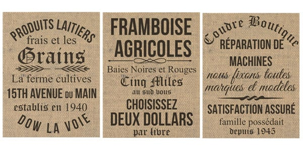 photo regarding Free Vintage Printable identified as No cost Printables- French Impressed Basic Grainsack Prints